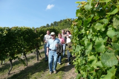 2007_09_15_#_15_52_36---TGS-Weinprobe